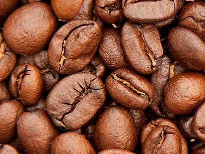 Historie zrnka kávy